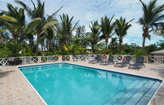 Large pool deck with pool chair in lush palm garden